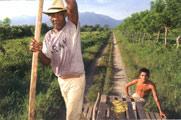 Schienenverkehr in Honduras
