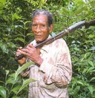 Miskito Honduras
